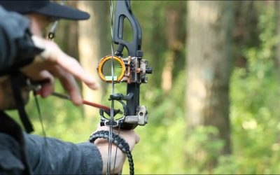 bow sights 5 pin